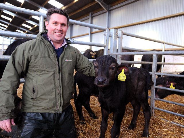 Steve Mitchell with the buffalo calf he helped to deliver. Pic: Fife Photo Agency