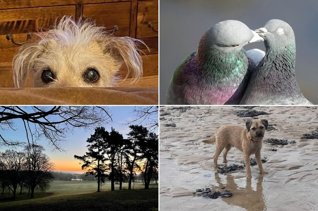 Here are 15 of your pictures that have made us smile over the last week.