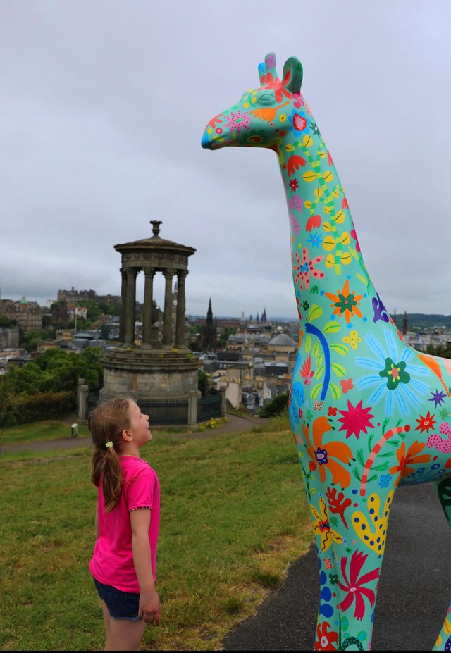 Colourful giraffe sculptures will take to the streets of the Capital next year.