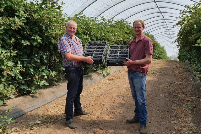 Robert Todd and Stewart Todd from Blacketyside Farm, Leven,  toast their on-going deal to supple Aldi stores across Scotland.