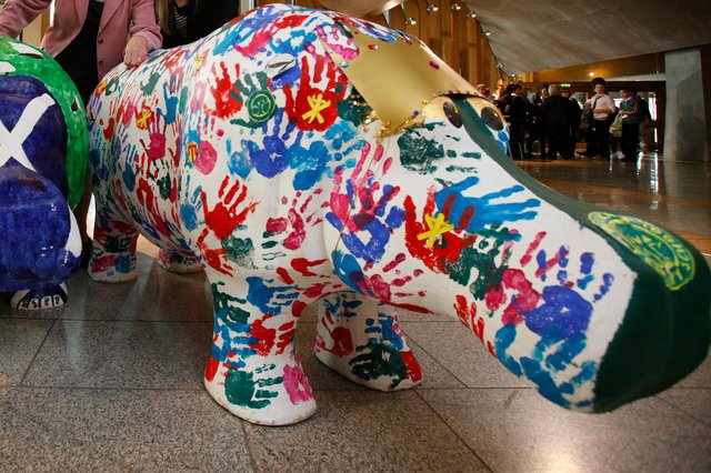 The Glenrothes hippos on show at Scottish Parliament.