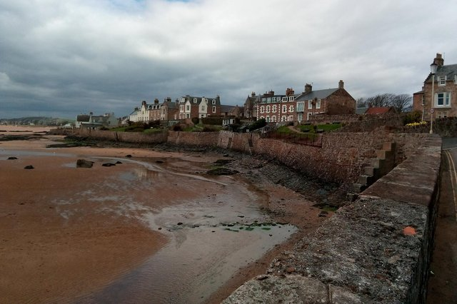 Elie Beach was a huge favourite with dog owners