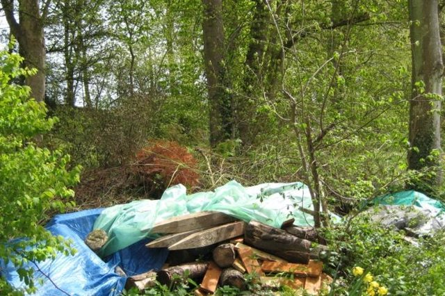 Building waste dumped in the woodland.