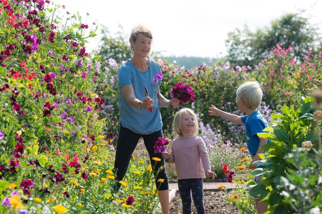 Fife venues are part of the summer garden festival