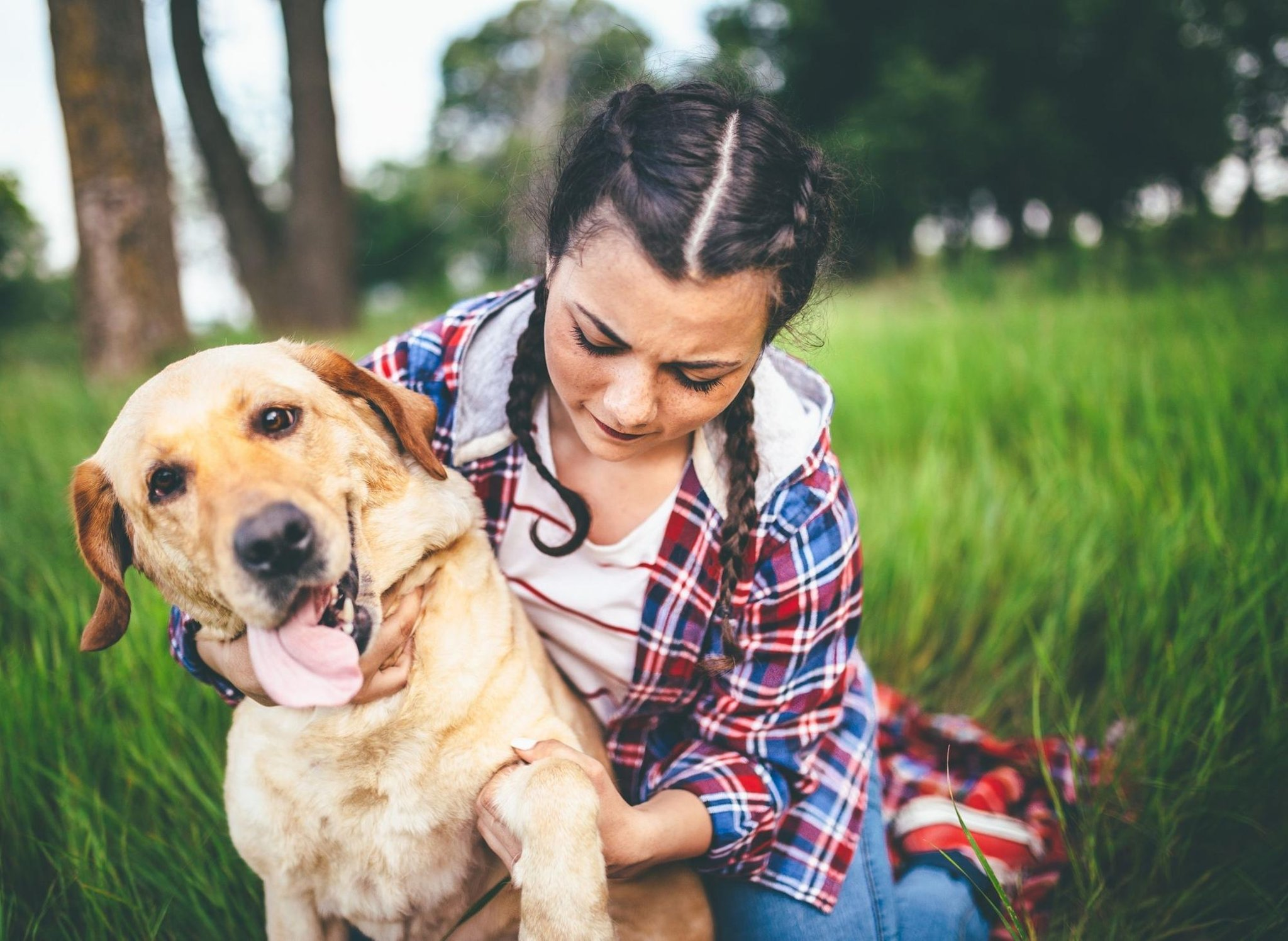 These are the 10 best dog breeds you should choose for a family with teenagers